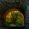 249/365-Sunset at the end of the tunnel