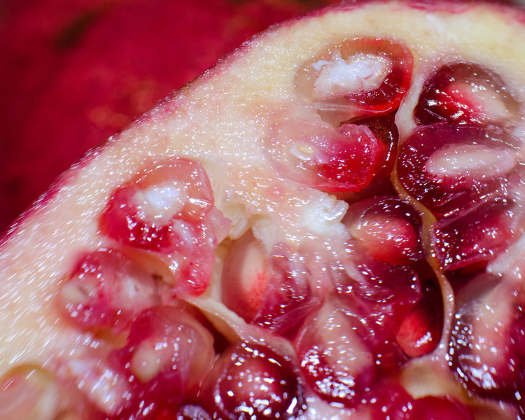 312/365-Pomegranate