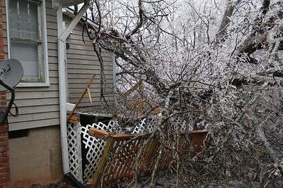 3/7/2014 Tree down in 1129 Cox Street.