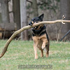 Orlee finds a big stick!