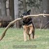 Orlee finds a big stick!