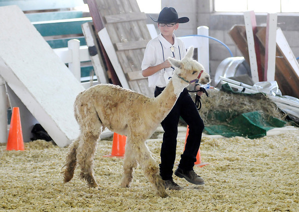 Don Knight/The Herald Bulletin<br /> 4-H Fair on Friday.