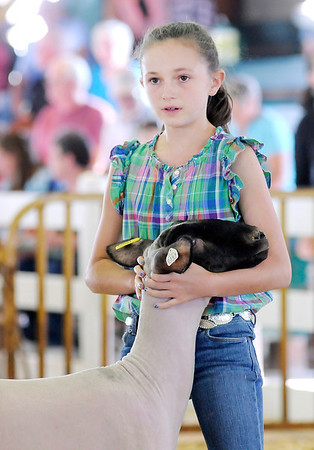 Don Knight/The Herald Bulletin<br /> Kelsey Hall holds onto her sheep as it is auctioned during the 4-H Livestock Auction on Thursday.