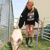 4-h Weigh in  - Pigs 055