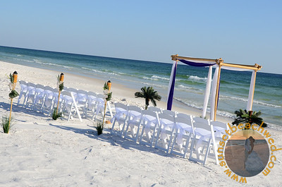 White Chair Sashes with Royal Purple and White on Arbor.