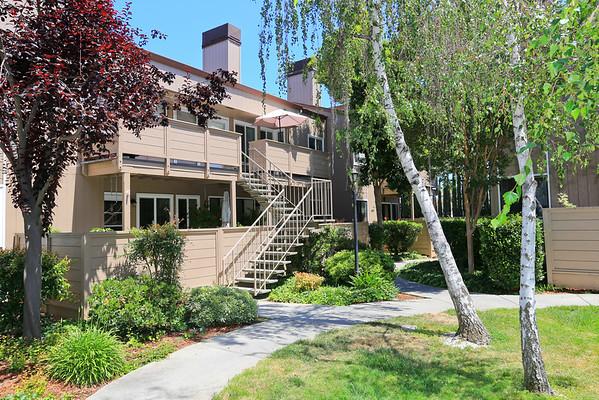4849 Pine Forest Pl San Jose CA 95118 | Mark Burstein