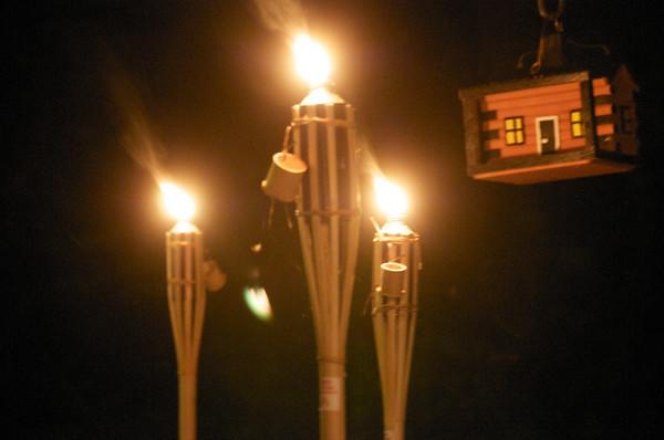 torches ablaze near the log cabin bird house