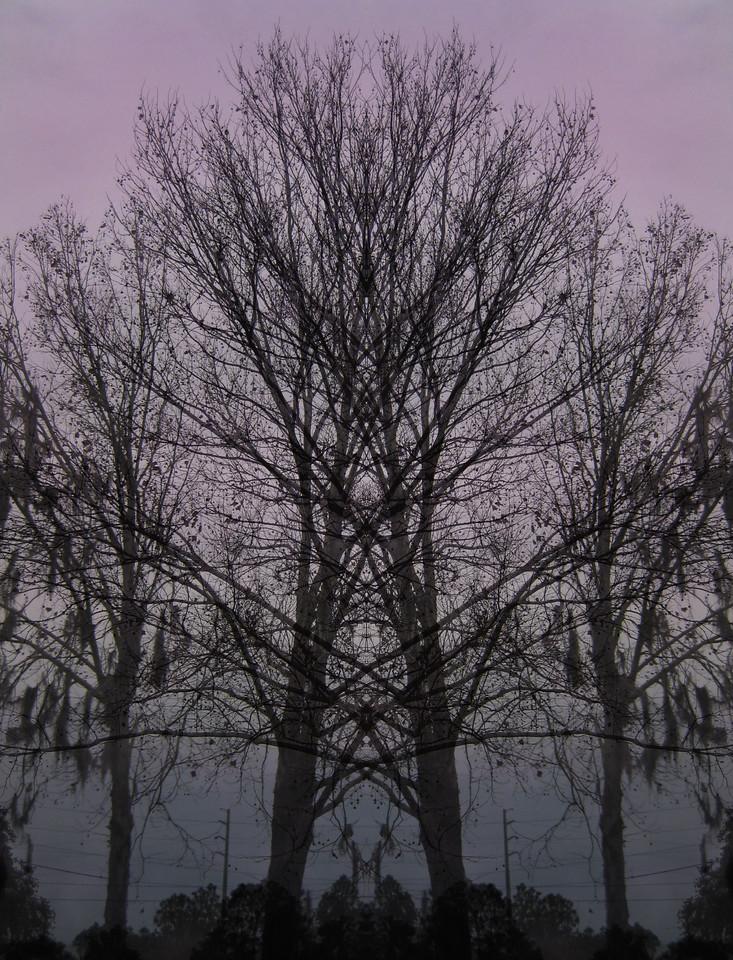 Dusk Mirror Montage
