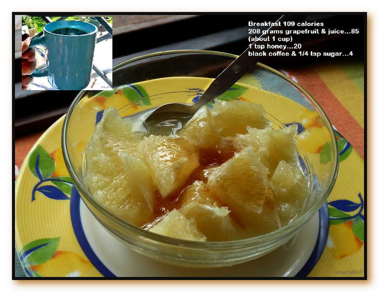 breakfast fast day #49 with 1/2 the double grapefruit - sept. 25 2013