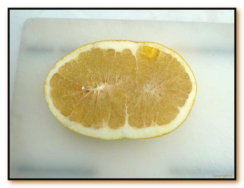 double grapefruit cut open