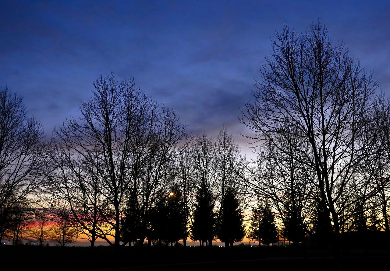 55, elk grove, sunrise