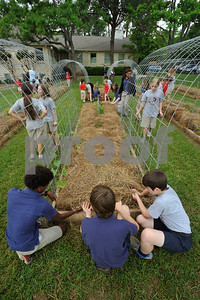 Good Shepherd School Garden