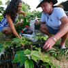 5th Annual Hawai'i Island Seed Exchange