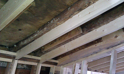 Rotting roof joists reinforced with 2x8s (over new bathtub) causes loss of some headroom. Note mold from lack of attic ventilation. Holes will be drilled at base of joists and baffles installed to channel air.