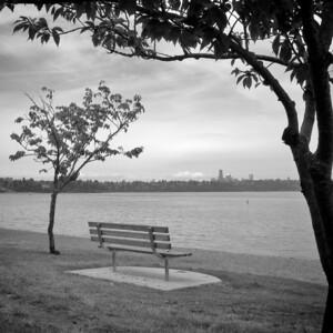 5 Seward Park