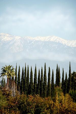 Контрасты солнечной Калифорнии.