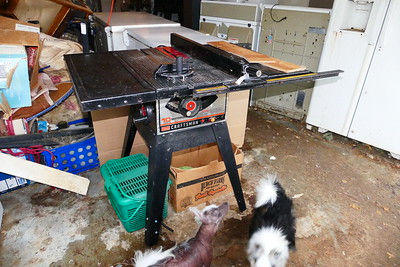 Sears Craftsman Table Saw at a yard sale for $20.  It works perfectly.