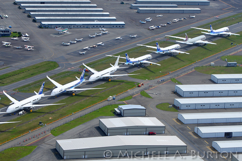 Grounded Boeing 787 Dreamliner airplanes awaiting approval to fly