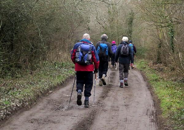 8 mile South Dorset Ramblers Walk from Broadmayne on 11 February 2015