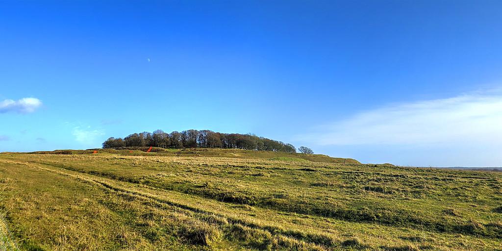 A last look at Badbury Rings, distinctive local landmark.