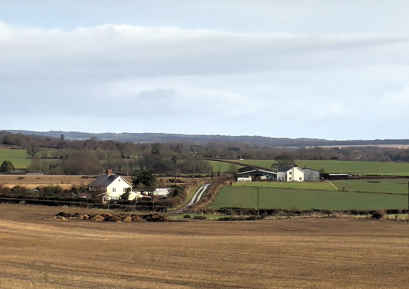 Lambing Cottage and behind, Old Lawn Farm, between Badbury Rings and Witchampton.