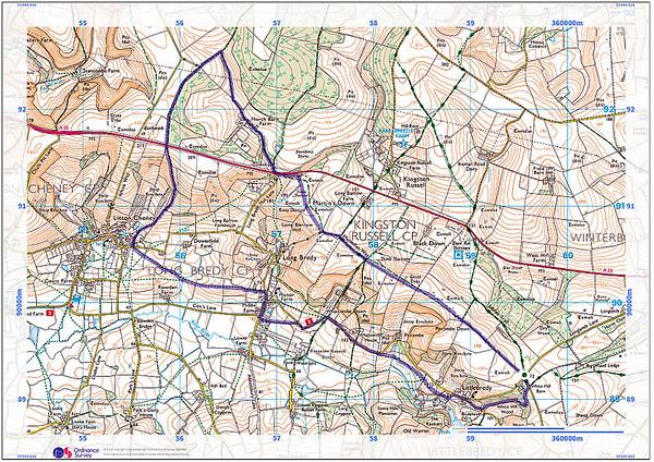 8 miles from Little Bredy, Dorset - 6 September 2015