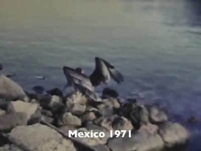 Mexico 1971