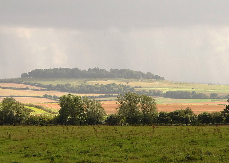 The Iron Age hill fort of Badbury Rings in the distance.