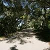 Arcady Road