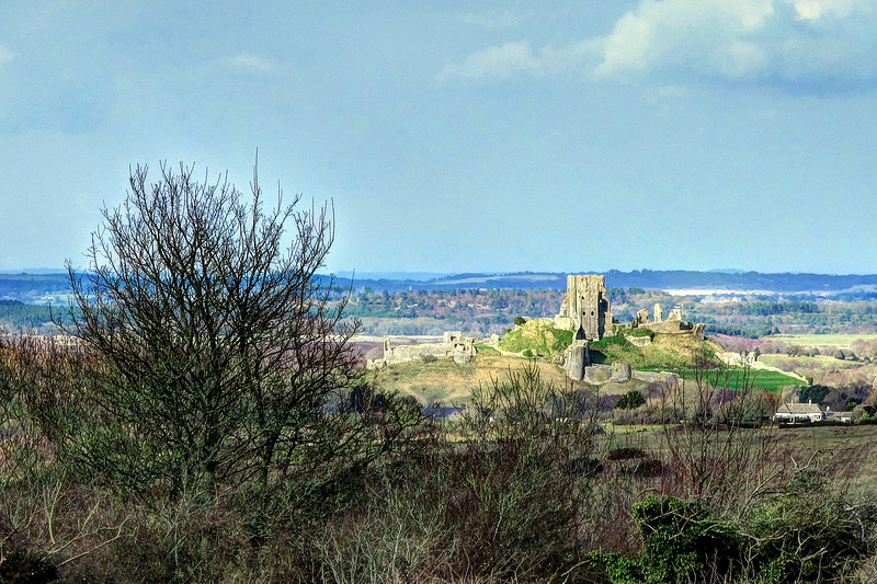 The descent into Corfe through Blashenwell Farm is accompanied by warm spring sunshine.