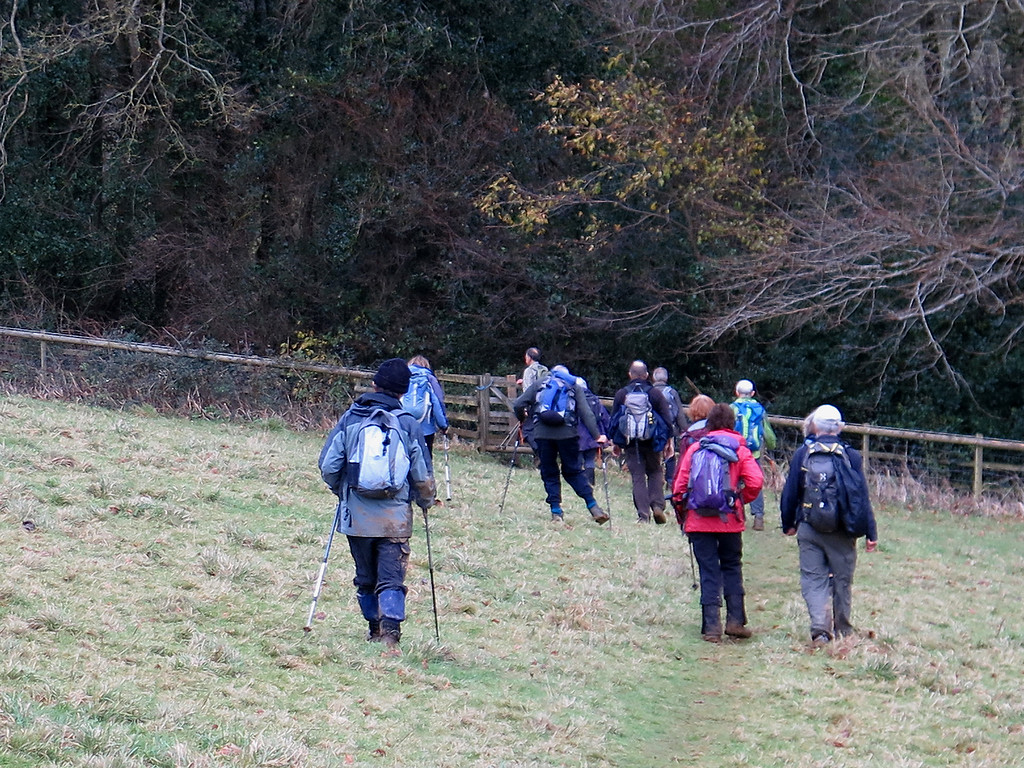 The group descends towards Beaminster