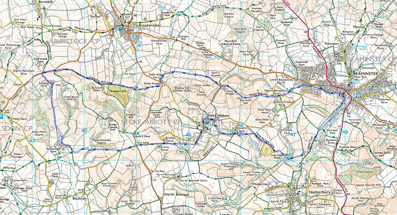 Shown in blue is the actual route of the walk.   The direction was anti-clockwise from the car park in Beaminster denoted by the blue flag.