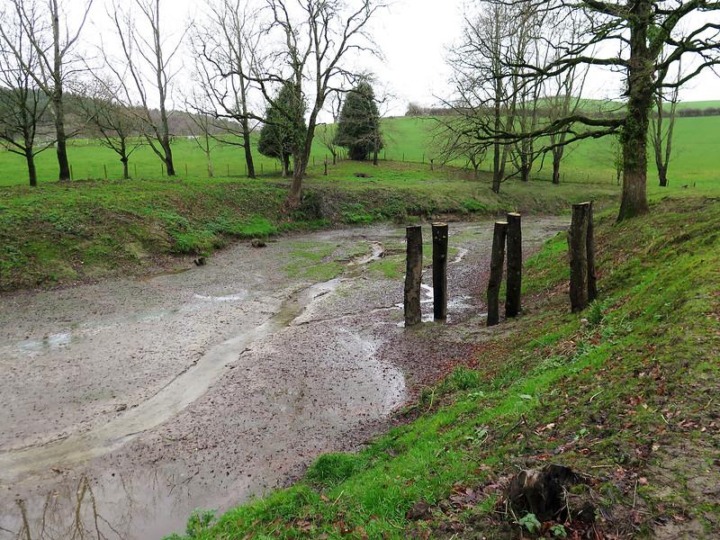 Laverstock Pond