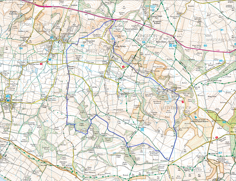 As usual the actual route taken is marked in blue, and was done anticlockwise from the blue flag in Little Bredy.