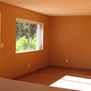 Sunlight beaming in Living  Room on hardwwod floors