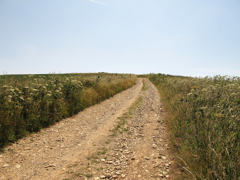 The track up to Swyre Head from Kimmeridge, temperature 30s Celsius .....