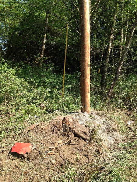 Launch stump and new utility pole.