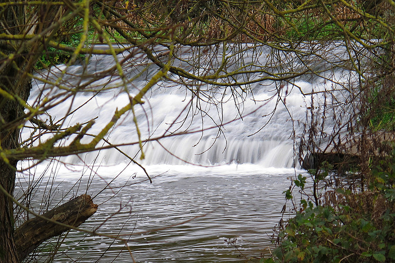 A weir in the river Stour at Canford