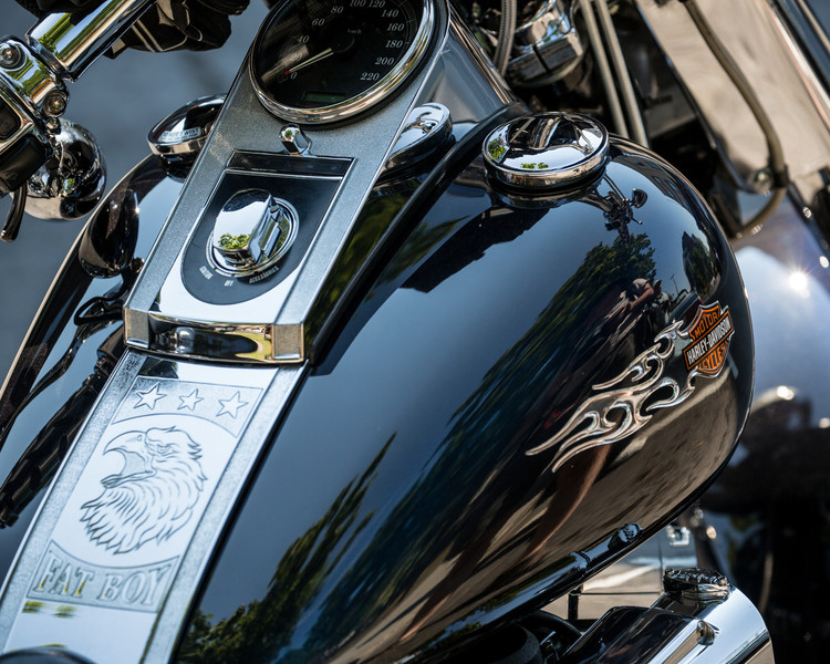 A sparkly Harley-Davidson motorcycle on a sunny summer day