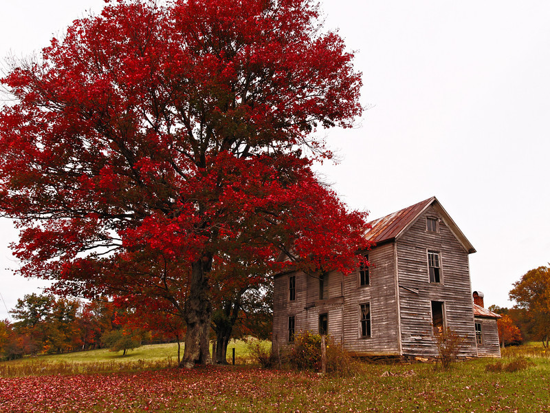 McCullough Homeplace