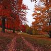 Entry to McCullough Farm - Floyd County VA