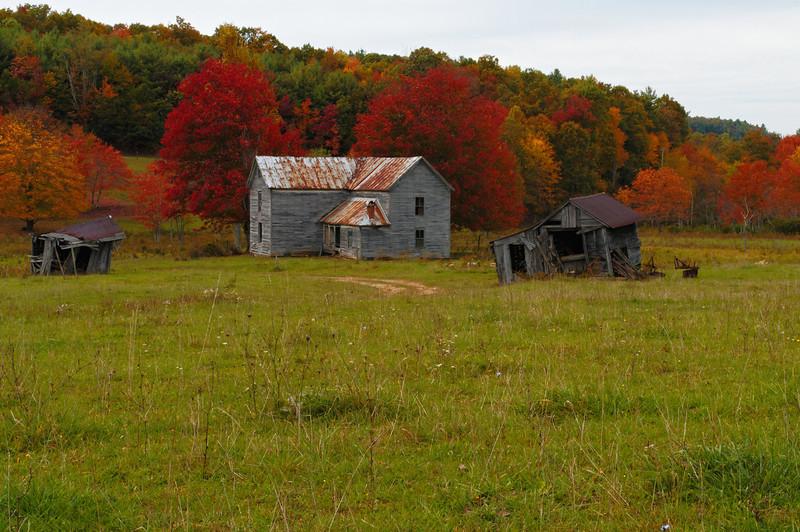 McCullough Farm - Back Yard View