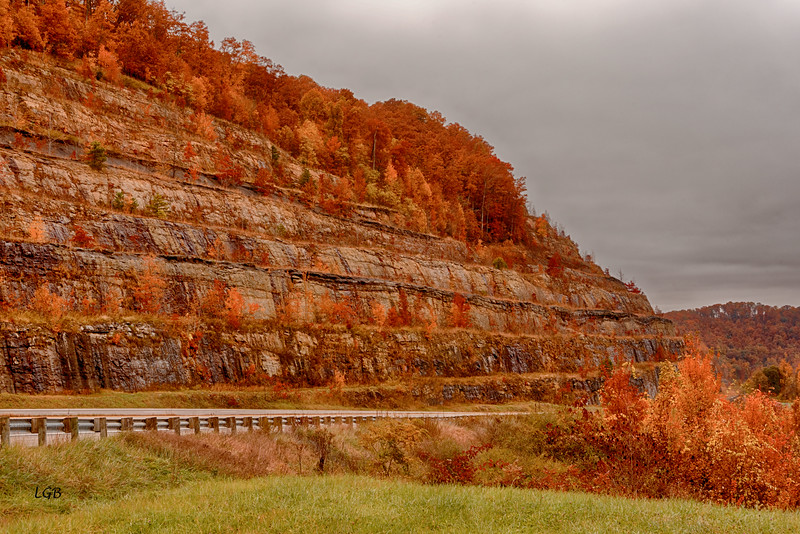 Can you imagine building these roads?  Notice trees growing on rock cliff.