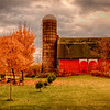 Barn near Lockport, NY