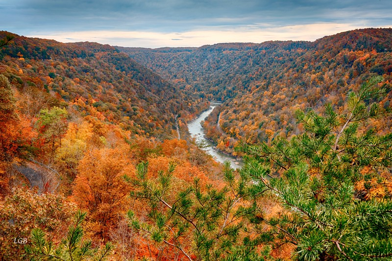View of the New River Gorge
