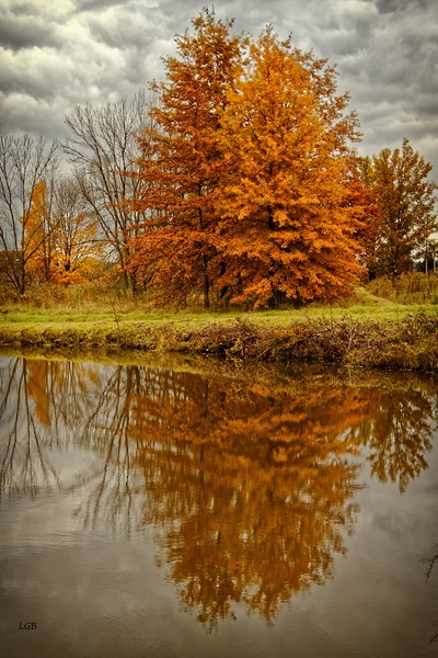 Fall Reflection,  New Castle, PA.