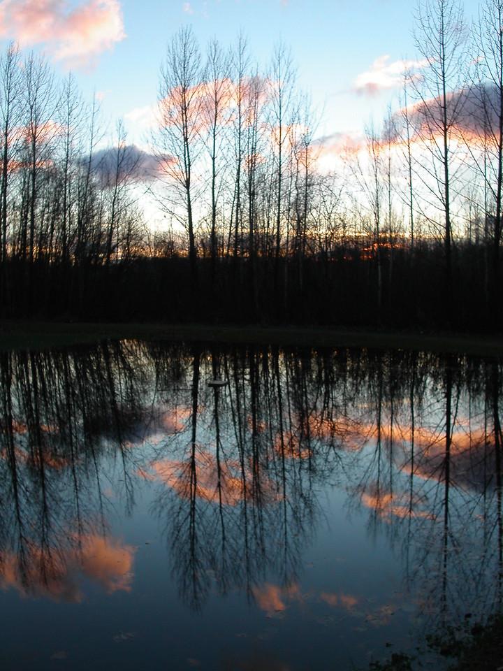 Anchorage Sky