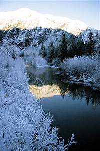 A winter creek