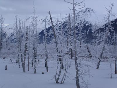 Winter - Potter, AK