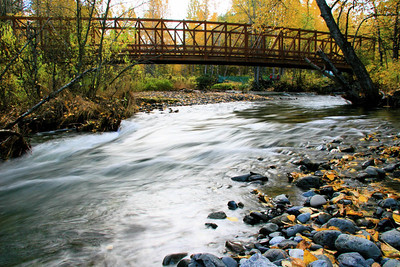 Bridge over Campbell Creek